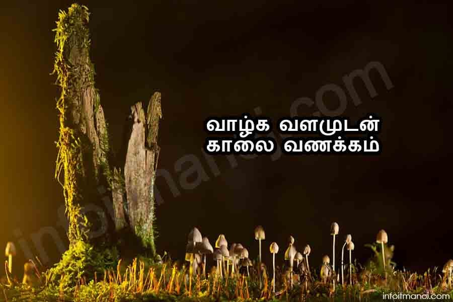 kalai vanakkam valthukal | good morning wishes