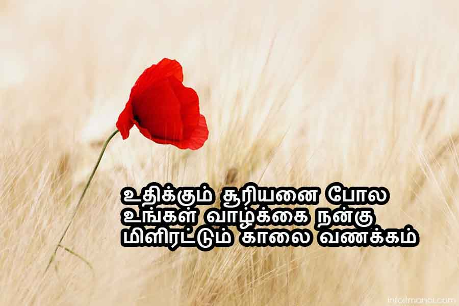 good morning wishes in tamil font