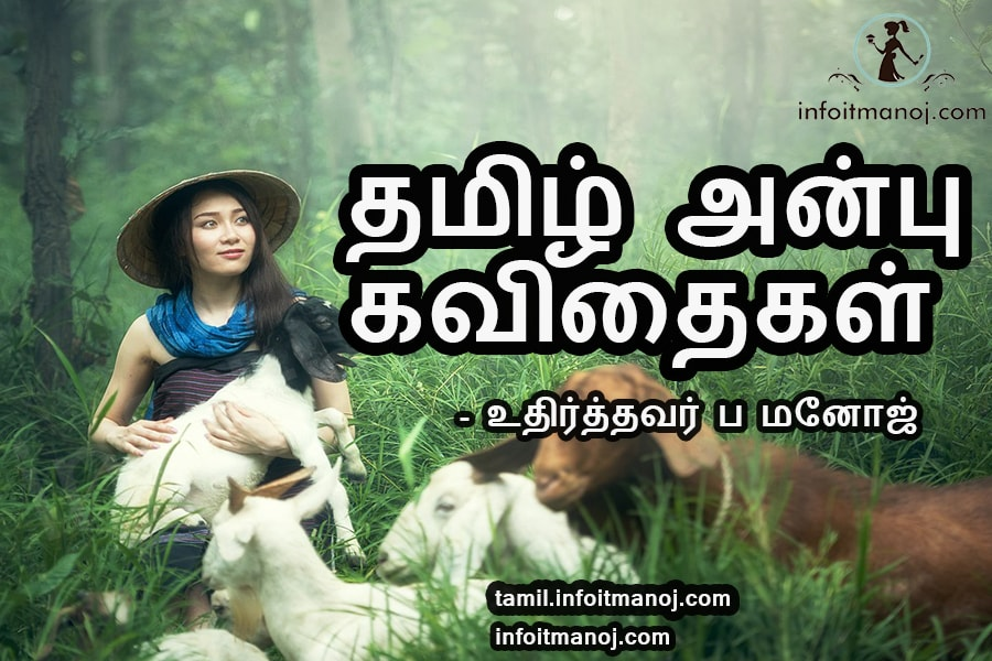 Tamil Anbu Kavithaigal Images Collections